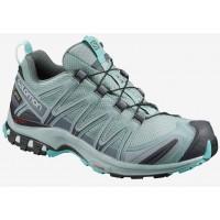 Salomon Shoes XA PRO 3D GTX W Lead/StoWea 2020