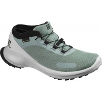 Salomon Shoes Sense Feel GTX W Lead/Pearl Blue/Black 2020