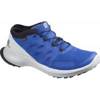 Salomon Shoes Sense Flow GTX Lapis /Pearl Blue/B 2020