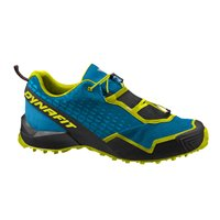 Dynafit Speed MTN Gore-TEX  Homme Blue/Lime 2020