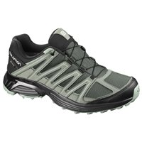 Salomon XT Asama GTX Urban Chic/Black/Green 2020
