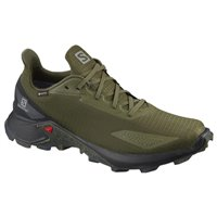 Salomon Shoes Alphacross GTX Olive Night/Black 2020
