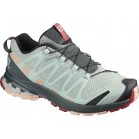 Salomon Shoes XA Pro 3D V8 Aqua Gray/Urban Chic 2020