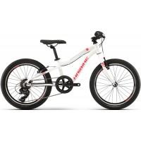 Haibike Seet Greedy Life 20 Komplettes Fahrrad 2020